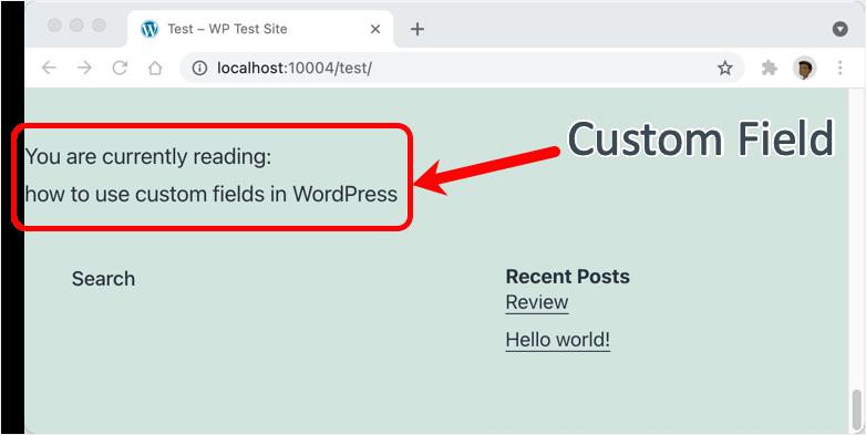 Showing Custom Fields in WordPress