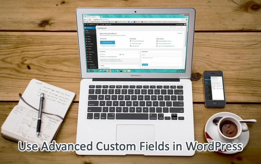 Use Advanced Custom Fields in WordPress