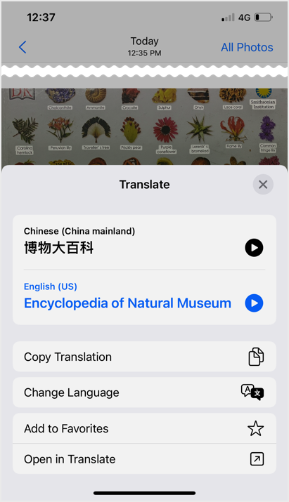 Translation with Options