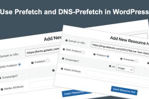 Use Prefetch and DNS-Prefetch in WordPress